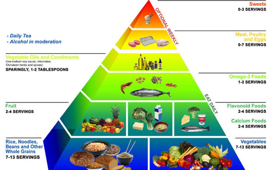 Nutrition Basics – Mark Blomeley – Sports Performance Coach